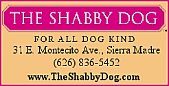 The Shabby Dog
