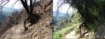 Trail2k8_2k11_04322