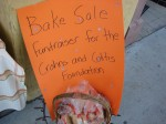 Local youngsters were raising money for a cause...