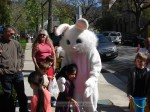 The Easter Bunny arrived shortly before the hunt, creating lots of great photo ops