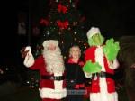 Santa, Mayor Pro Tem Nancy Walsh and the Grinch lit the tree