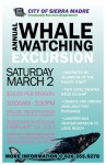 Whale Watching Trip Planned by Community Services Dept.
