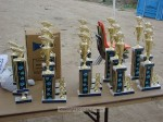 Winners in each age group and certain categories get trophies
